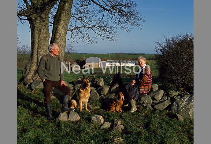 SunLife - Dog Kennel Owners, Northern Ireland